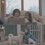 "'TV동물농장' 이효리, 반려견 순심이와 이별 공개 ""함께한 3647일 특별"""